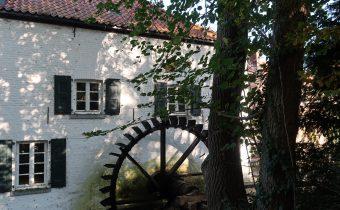 Mühlrad Schrofmühle