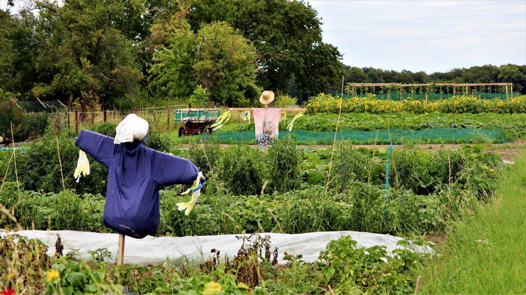 Rickelrath Gartenansicht